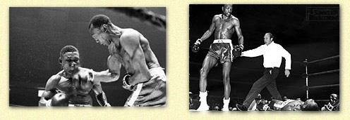 http://www.newmexicoboxing.com/history_newmexico_boxing/images/foster_tiger.jpg